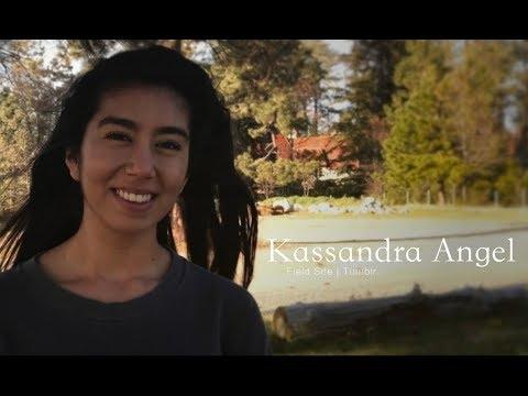 Kassandra Angel